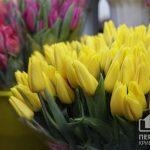 Какой будет погода в Кривом Роге 2 марта и что советуют астрологи в этот день