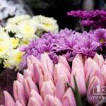 Какой будет погода в Кривом Роге 9 марта и что советуют астрологи в этот день