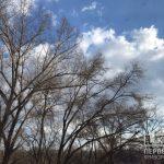 Погода в Кривом Роге и гороскоп на 10 марта