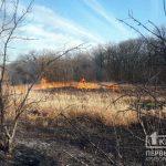 Огонь убивает: криворожан просят не провоцировать пожары в экосистемах