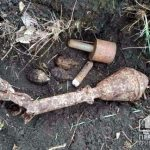 В Софиевском районе обнаружили несколько гранат времен Второй Мировой войны