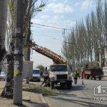 На одном из центральных проспектов Кривого Рога обрезают ветки деревьев