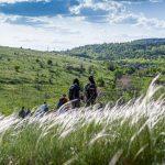 Майже 60 туристичних маршрутів розробили у Кривому Розі