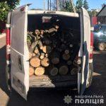 В Кривом Роге полицейские изъяли авто, в котором была незаконно срубленная древесина
