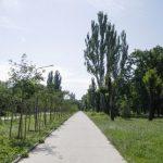 245 тысяч гривен заплатят чиновники Кривбассводоканалу за строительство инженерных сетей для туалетов в парке Юбилейном