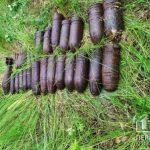 В лесополосе под Кривым Рогом обнаружено 29 боеприпасов
