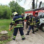 Спасатели в Кривом Роге развернули операцию, чтобы достать из колодца щенка