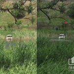 В Кривом Роге из болота пытаются достать машину