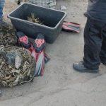 В Криворожском районе у нарушителей изъяли 45 кило раков