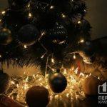 Криворожане продемонстрировали как украсили ёлки и дома к Новому Году