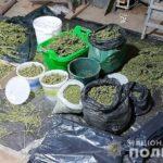 Криворізькі поліцейські вилучили 40 кг канабісу