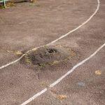 В Кривом Роге проведут капитальный ремонт стадиона гимназии №95 за 14,9 миллионов