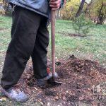 В парке Мершавцева криворожане высадили деревья